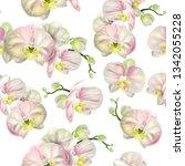 vector botanical seamless... | Shutterstock .eps vector #1342055228