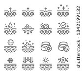 skin icon set. contains such... | Shutterstock .eps vector #1342199132