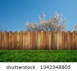 spring bloom tree in backyard... | Shutterstock . vector #1342348805