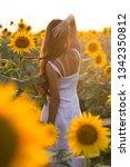 beautiful woman with long hair... | Shutterstock . vector #1342350812