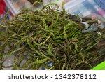 aci ot ege asparagus   Shutterstock . vector #1342378112