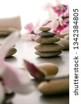 spa and wellness. natural...   Shutterstock . vector #1342384805