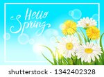 spring daisies  chamomiles... | Shutterstock .eps vector #1342402328