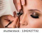 make up artist working in a... | Shutterstock . vector #1342427732