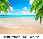 coconut palm trees against blue ... | Shutterstock . vector #1342506245