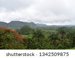 green landscape of the valley... | Shutterstock . vector #1342509875
