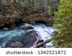 The Rogue River flows underground and exits at a beautiful natural bridge