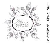 botanical illustration label... | Shutterstock .eps vector #1342522028