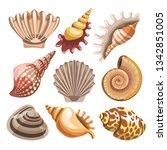 underwater creatures seashell... | Shutterstock .eps vector #1342851005