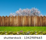 spring bloom tree in backyard... | Shutterstock . vector #1342989665
