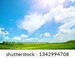 summer field landscape | Shutterstock . vector #1342994708