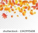 maple leaves vector  autumn... | Shutterstock .eps vector #1342995608