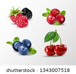 Set Of Vector Realistic Berrie...