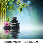 tower black stone and hibiscus... | Shutterstock . vector #134302025