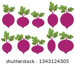 set of vector beet with leaves... | Shutterstock .eps vector #1343124305