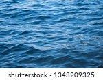 blue sea wave ripple curl water ...   Shutterstock . vector #1343209325