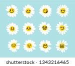 set of white daisy or chamomile ... | Shutterstock .eps vector #1343216465