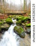 zipfelbach schlucht ...   Shutterstock . vector #1343283125
