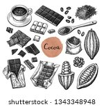 cocoa and chocolate set. ink... | Shutterstock .eps vector #1343348948