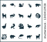 fauna icons set with raven  dog ... | Shutterstock .eps vector #1343413928