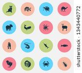 fauna icons set with cachalote  ... | Shutterstock .eps vector #1343440772