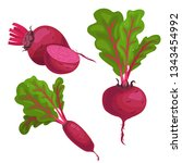 beet roots set. whole different ... | Shutterstock .eps vector #1343454992