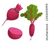 beet roots set. whole with... | Shutterstock .eps vector #1343454995
