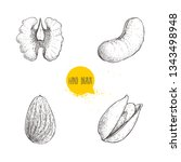 hand drawn sketch style nuts... | Shutterstock .eps vector #1343498948