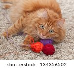 Stock photo red fluffy cat playing with colored balls of yarn on a carpet 134356502