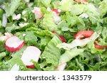 fresh green salad background - stock photo