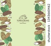 background with tonka beans ... | Shutterstock .eps vector #1343660462