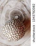 texture of a tree. art object....   Shutterstock . vector #1343782082