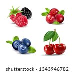 set of vector realistic berries ... | Shutterstock .eps vector #1343946782