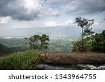 a scenic view of a lush green... | Shutterstock . vector #1343964755