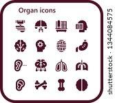 organ icon set. 16 filled organ ...   Shutterstock .eps vector #1344084575
