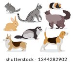 Pets Icon Set  Cute Gray...