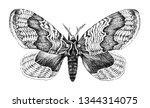 i have drawn this picture  ... | Shutterstock . vector #1344314075