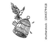 bird flying out of the cage.... | Shutterstock .eps vector #1344379418