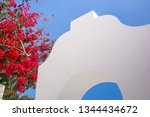 Bougainvillea Flowers Next To...