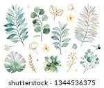 watercolor green collection... | Shutterstock . vector #1344536375