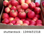 red apples harvest in boxes | Shutterstock . vector #1344651518