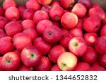 red apples harvest in boxes | Shutterstock . vector #1344652832