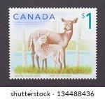 canada   circa 2005  a postage... | Shutterstock . vector #134488436