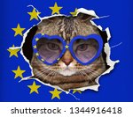 the funny cat in heart shaped... | Shutterstock . vector #1344916418
