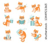 shiba inu dogs in different... | Shutterstock .eps vector #1344921365