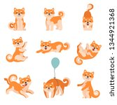 shiba inu dogs performing... | Shutterstock .eps vector #1344921368
