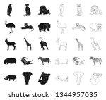 different animals black outline ... | Shutterstock .eps vector #1344957035