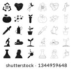 isolated object of  and  symbol....   Shutterstock .eps vector #1344959648
