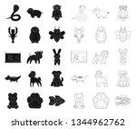 an unrealistic black outline... | Shutterstock .eps vector #1344962762