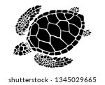 graphic sea turtle vector... | Shutterstock .eps vector #1345029665